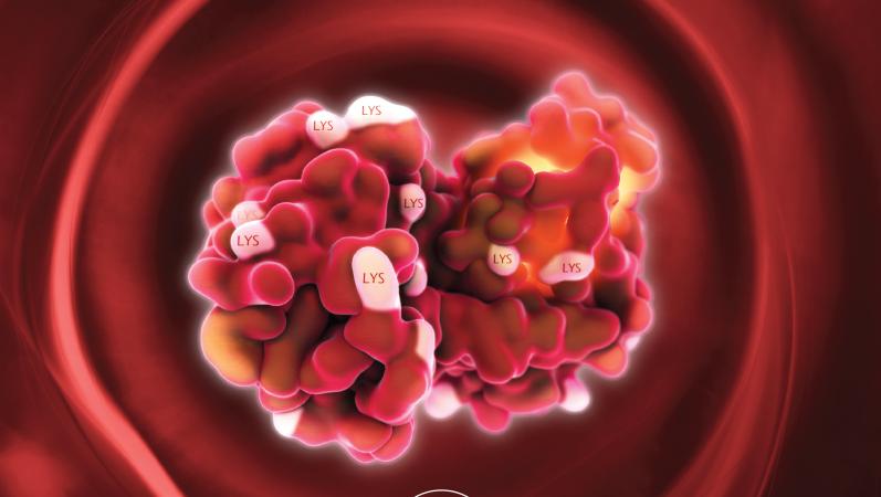 Medical Illustration / GNSI Source Books
