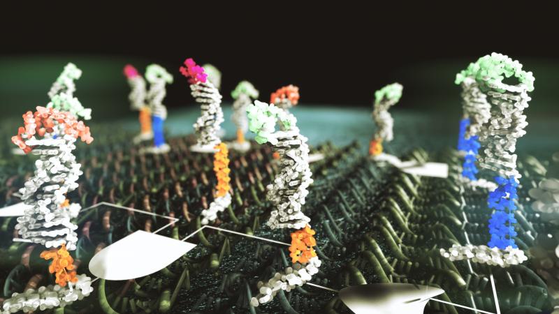 DNA computation illustration for Microsoft Research