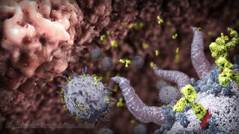 T-Cell Illustration for Pint of Science